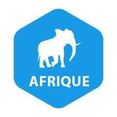 Chronique CFNEWS Afrique